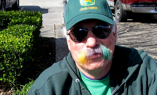 Mardi Gras Moustache