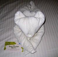 Fuzzy Towel Cat