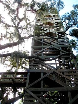 Myakka River State Park's Canopy Walk