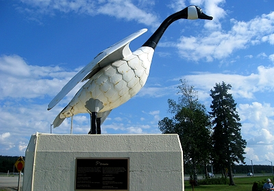 The Wawa Goose