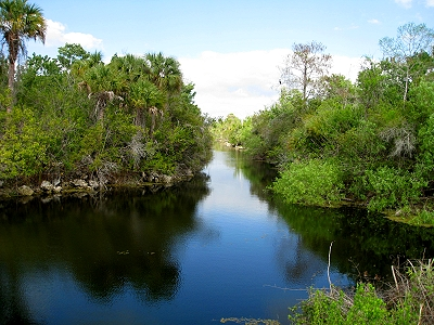 Florida Everglades, Skunk Ape Territory