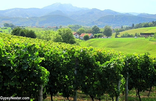 The Hiruzta Winery in the Basque Country of Spain