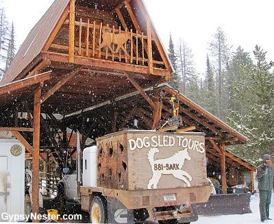 Dog Sled Adventures, Olney, Montana outside of Whitefish