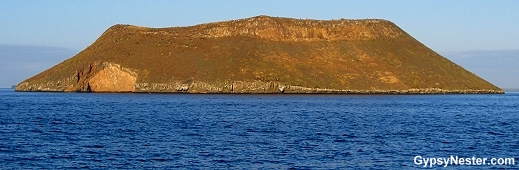 Daphne Major in the Galapagos