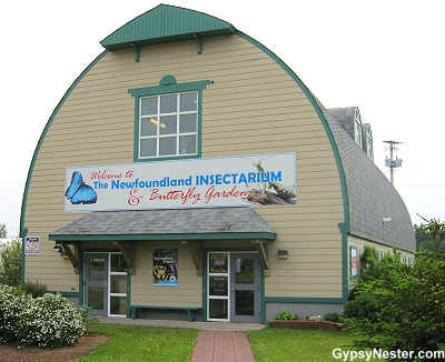 The Newfoundland Insectarium