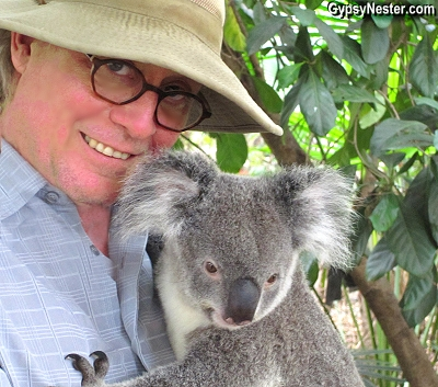 David cuddles with a koala at Lone Pine Koala Santuary in Brisbane, Queensland, Australia