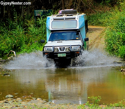 Fording the river with Off Beat Eco Tours in Noosa, Queensland, Australia