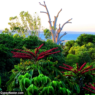 The view from Outrigger Resort in Noosa, Queensland, Australia