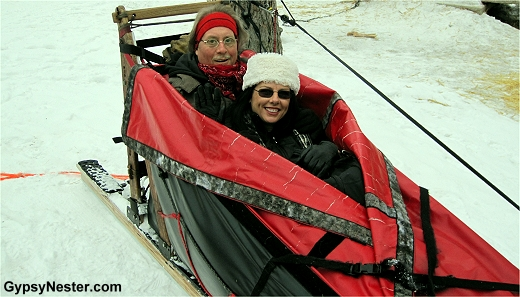 Getting ready to dog sled in Whitefish, Montana!
