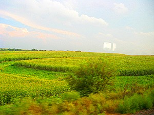 Out the train window in Illinois