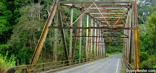 A bridge in the cloud forest of Costa Rica