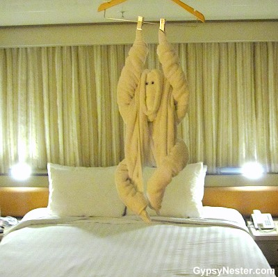 Most amazing towel art on Holland America