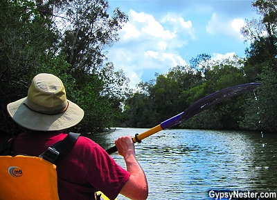 Kayaking the Australian Everglades! GypsyNester.com