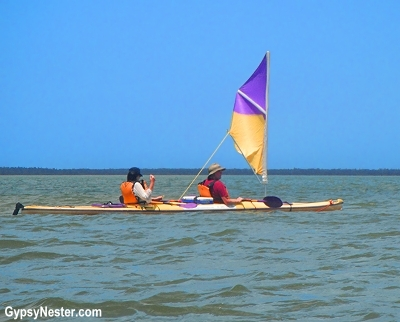 Sail kayaking in the Australian Everglades