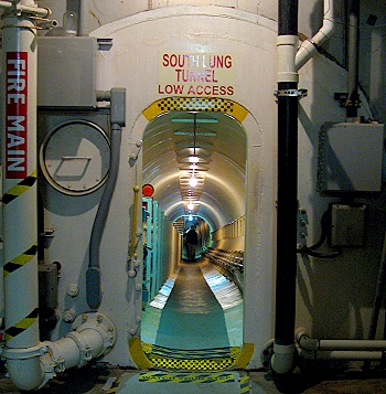 The Tunnel into the Lungs of the Biosphere