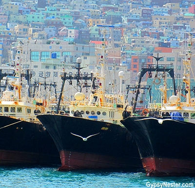 Fishing boats in Busan South Korea