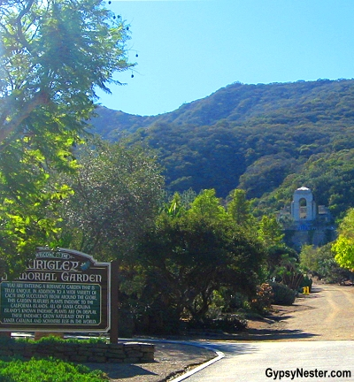 The Wrigley Memorial Gardens on Catalina Island, California