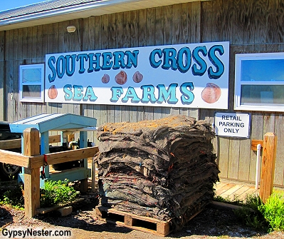 Southern Cross Sea Farms, Cedar Key, Florida