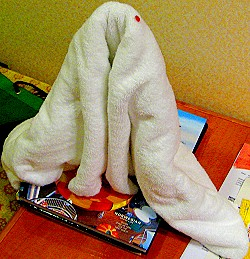 Fuzzy Towel Space Shuttle?