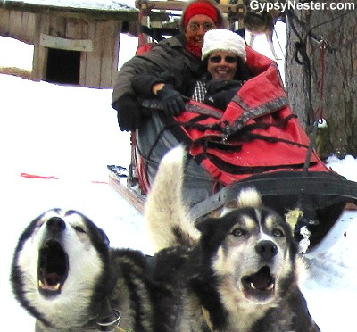 The GypsyNesters go dog sledding in Whitefish, Montana