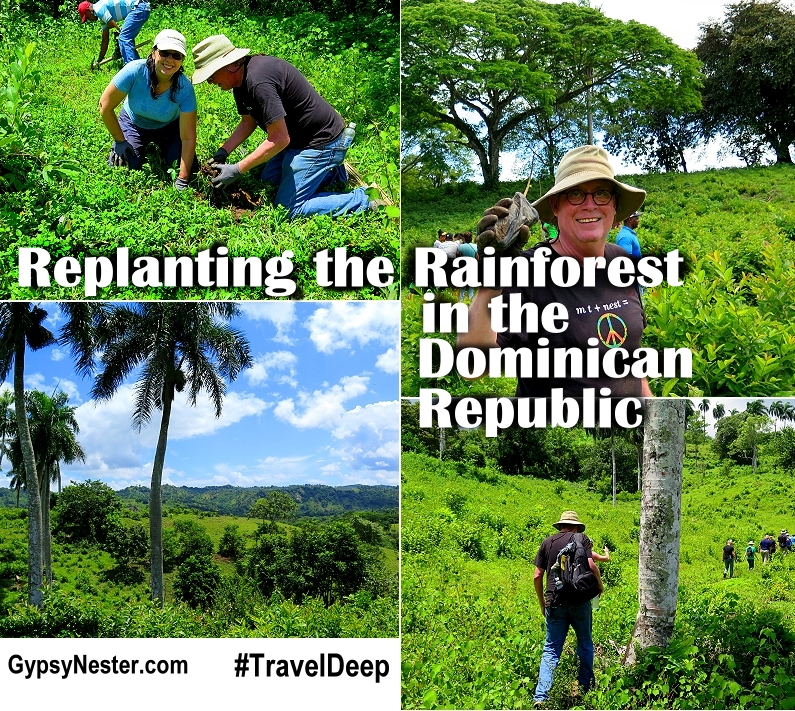 Bucket List Item: Do good and travel! Learn how to replant the rainforest in the Dominican Republic!