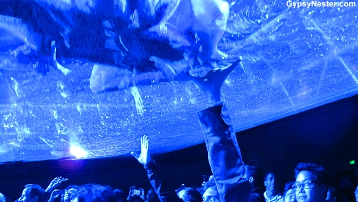 Fuerza Bruta water ceiling