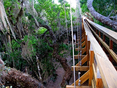 The Canopy Walkway near Sarasota Florida