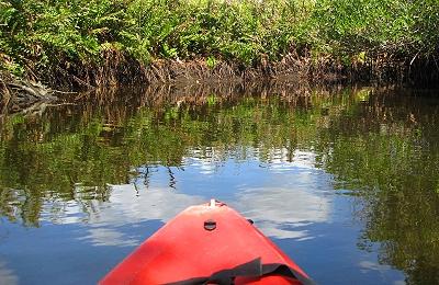 Kyaking the Orange River