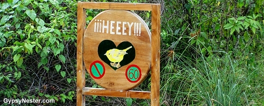 Signs in island of Isabela, in the Galapagos, warn drivers to slow down for the safety of the birds.