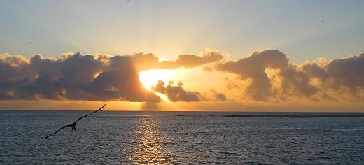 Sunrise in the Galapagos