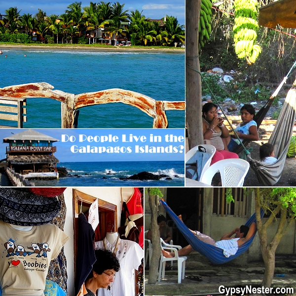 Do people live in the Galapagos Islands? We get asked that a lot! Find out: http://www.gypsynester.com/puerto-villamil.htm