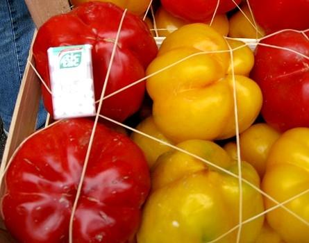 Crazy Huge Bell Peppers