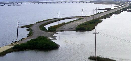 Road through the salt marsh toward Grand Isle