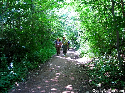 Lover's Lane at Green Gables National Historic Site