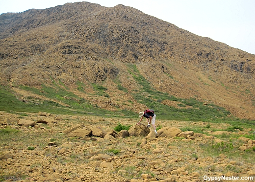 The Tablelands - step on to the Earth's Mantle in Newfoundland!
