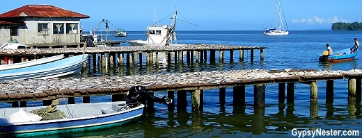 Fish drying on the docks in Livingston, Guatemala