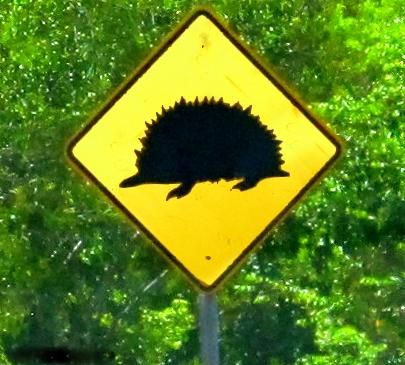 Akidna road sign in the Hinterlands of Queensland, Australia