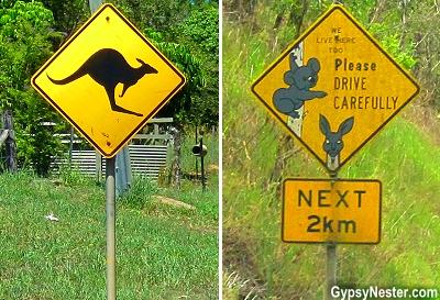 Kangaroo and Koala signs in the Hinterlands of Queensland, Australia