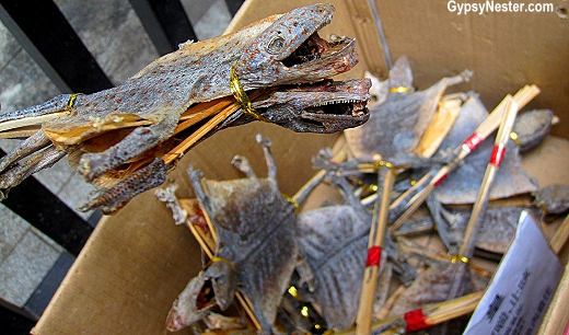Dried animal on a stick on Tonic Food Street in Hong Kong