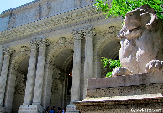 The lions in front of the New York Public Library are named Patience and Fortitude. This is Fortitude, and the easiest way to tell them apart is that Fortitude is closest to 42nd Street. Get it? 42/fortitude?