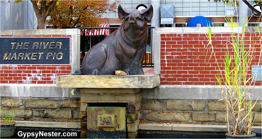 The River Market Pig, Little Rock Arkansas