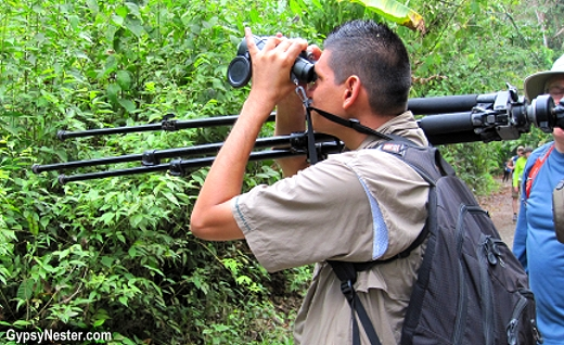 Our wildlife spotting guide at Manuel Antonio National Park, Costa Rica