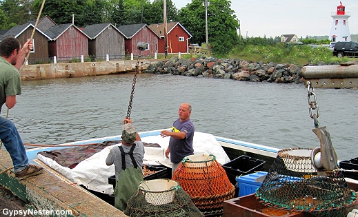 Crab fisherman bring in their catch in Victoria-by-the-sea, Prince Edward Island
