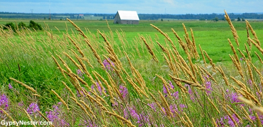 Farmland in New Brunswick