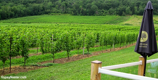 Gaspereau Vineyards, Nova Scotia, Canada