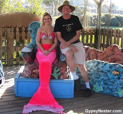 David poses with a Weeki Wachee Mermaid!