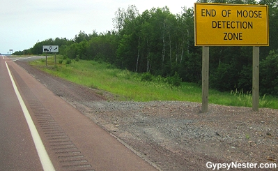 Moose detection system sign in Newfoundland