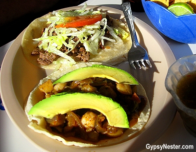 Scallop tacos at Mary's Sea Food Restaurant in Rocky Point, Mexico
