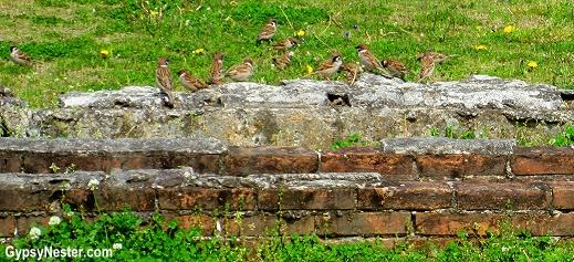 Prison wall at the Nagasaki Peace Garden