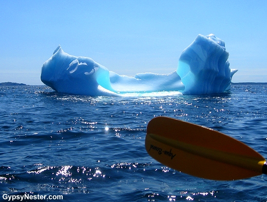 Kayaking with Icebergs in Newfoundland